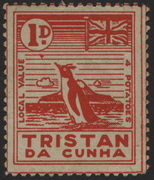 Tristan Da Cunha Permanent Exibition Supporting Group