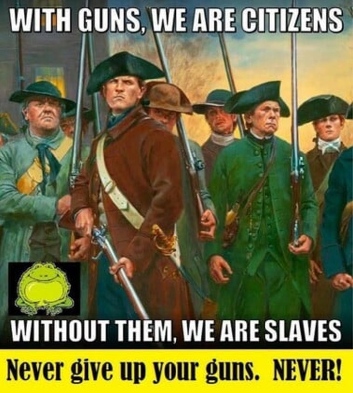 People with guns keep the government in it's place,Constitutional