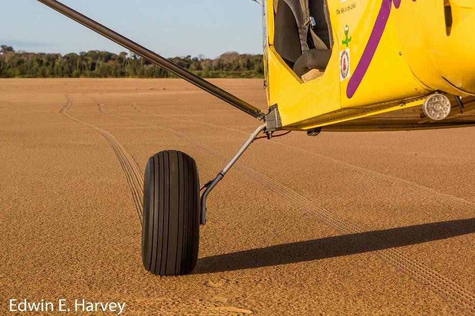 STOL CH 701 landing gear