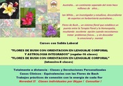 Flores de Bush, Astrología y Lenguaje Corporal Integrado