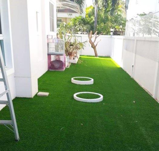 3 Kreasi Mempercantik Rumah Dengan Rumput Sintetis