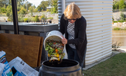 Community Composting Welcome Day
