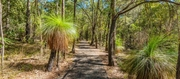 Brisbane Nature Rangers: Plastic free in our creeks