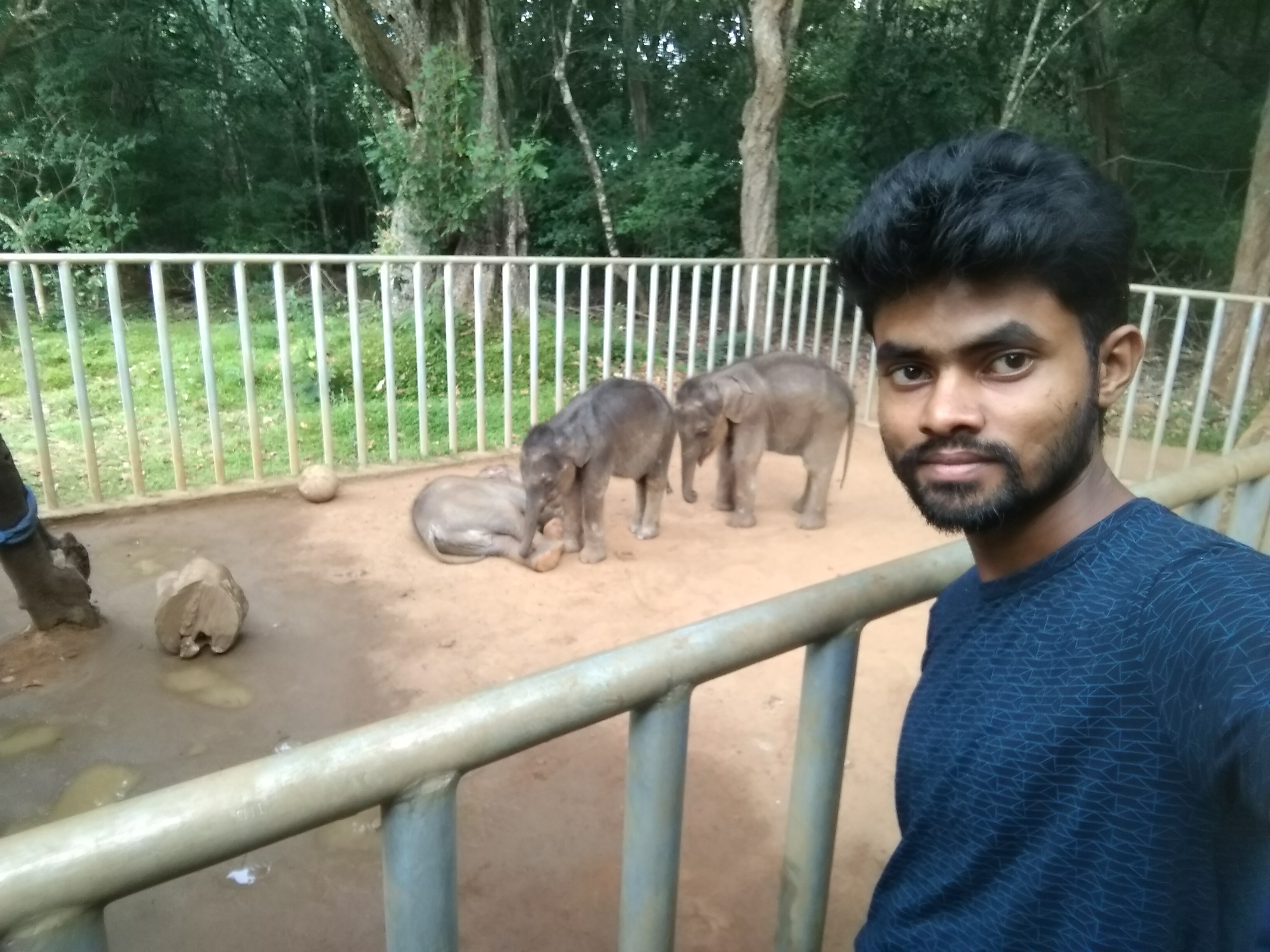 Selfie with baby elephant