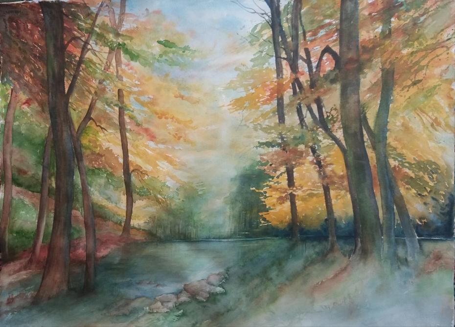 Forêt tant attendue