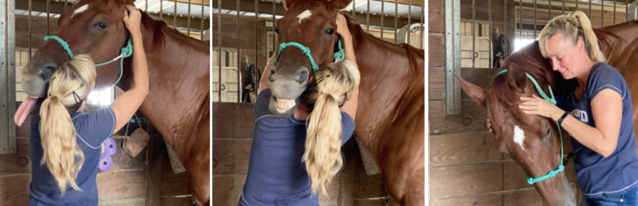Bonnie and Jett Working on His TMJ