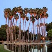 South bay Saturdays - Las palmas park