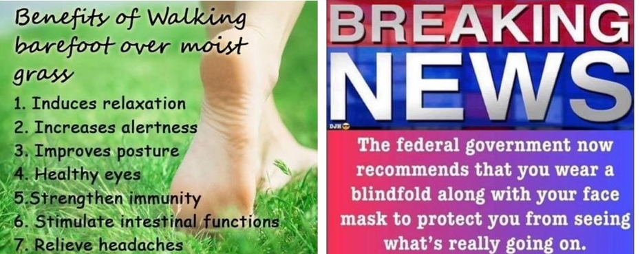 Barefoot-News