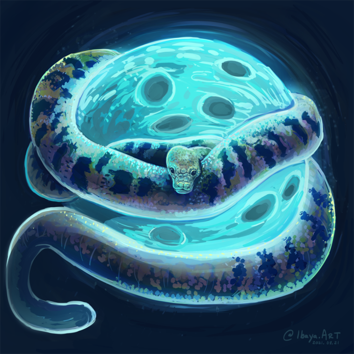 Boina Kati | Dark Serpent Moon