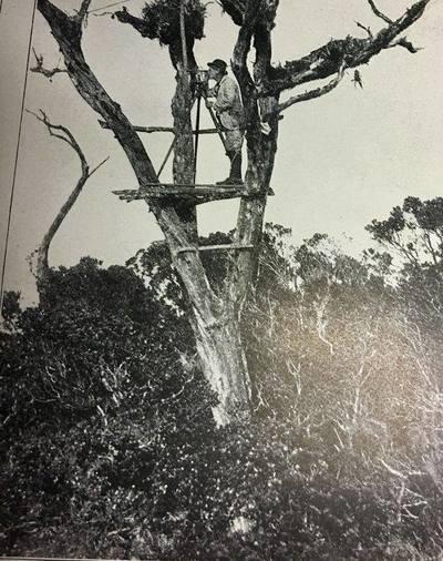 Triangulation Station, Hawaiian Islands date unknown #surveyinghistory