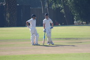 201901 Cricket 2nd vs Wynberg Part1