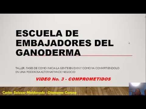 TALLER COMO GUIAR AL ÉXITO A TUS CONSUMIDORES --3 DE 5