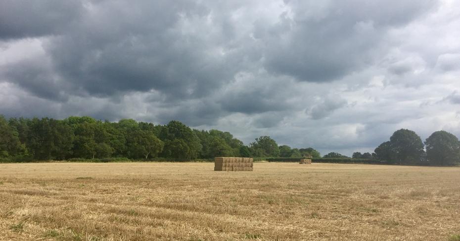Billingshurst circular 28 August 2021