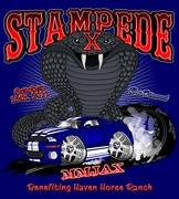 Stampede XI - Mustang & Ford show, Jacksonville, FL