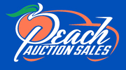 FALL PEACH CLASSIC COLLECTOR CAR AUCTION -Byron, GA