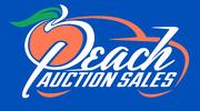 FALL PEACH CLASSIC COLLECTOR CAR AUCTION -Byron, GA