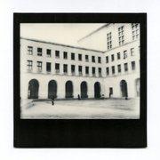 Università degli Studi di Trieste - domenica