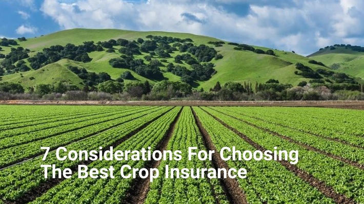 7 Considerations For Choosing The Best Crop Insurance